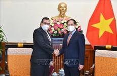 越南外长裴青山会见巴拿马驻越大使