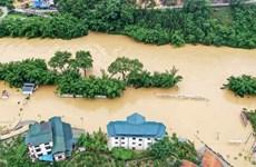 东盟携手合作 共同应对自然灾害的挑战