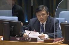 越南与联合国安理会:越南主持安理会南苏丹问题委员会会议