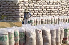 向受疫情影响的困难群众发放13.6万吨大米