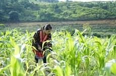 促进可持续扶贫政策有效落实