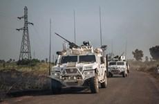 越南与联合国安理会:越南对中非共和国政府单方面宣布停火表示欢迎