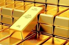 10月19日上午越南国内黄金价格上涨5万越盾