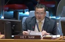越南与联合国安理会:越南对非洲大湖区的局势表示担忧