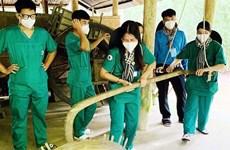 越南提高旅游企业的适应能力
