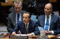 越南与联合国安理会:越南鼓励黎巴嫩新政府以改革渡过当前危机