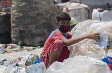 东盟努力消除最恶劣形式的童工劳动