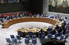 越南与联合国安理会:越南支持妇女对维持和建设和平的作用