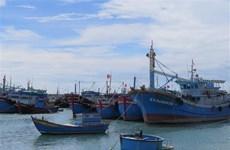 越南水产企业兑现打击IUU渔业捕捞的承诺
