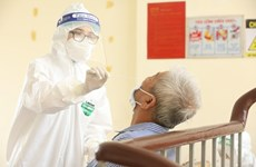 10月23日越南新增治愈病例3373例和死亡病例77例