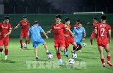 10月27日起球迷可购票观看越南队主场2场2022年世界杯亚洲区预选赛比赛