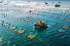促进海水养殖基础设施系统同步发展