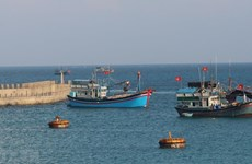 越南海洋岛屿:助力渔民返海谋生