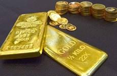 10月27日上午越南国内黄金价格上涨15万越盾