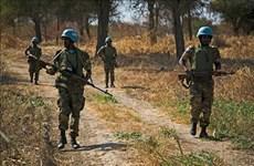 越南与联合国安理会:越南呼吁苏丹和南苏丹为解决阿卜耶伊争端作出更多努力