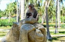 猴岛——美丽的芽庄市不可错过的景点