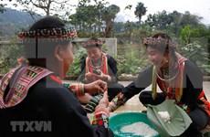 组图:安沛省红瑶族的独特过年习俗