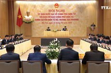 越南信息技术企业有足够能力参与电子政务建设