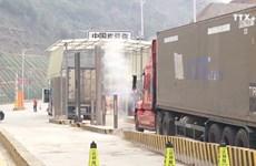谅山省大力促进货物贸易进出口
