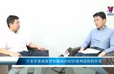 日本学者高度评价越南在RCEP谈判进程的作用