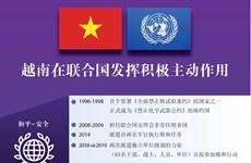 图表新闻:越南在联合国发挥积极主动作用