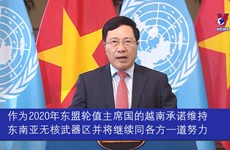 越南支持消除和不扩散核武器的一切努力