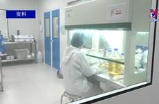 越南正式启动Nano Covax三期人体临床试验