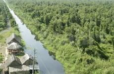 FAO协助越南管理森林