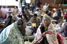越南愿意协助日本克服地震和海啸后果