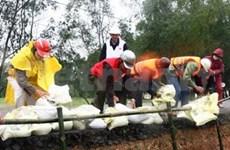 越南努力同国际社会保护全球气候