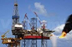 荷兰企业希望向越南油气领域进行投资