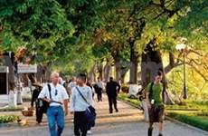 东盟游客占越南国际游客近20%