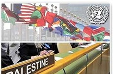 越南支持巴勒斯坦早日成为联合国成员国