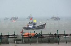 岘港市举行应对海啸演习