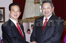 越南住印度尼西亚大使:印尼是越南的重要合作伙伴