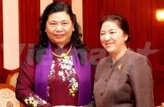 越南国会高级代表团访问老挝
