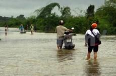 政府出资协助九龙江三角洲各省市克服洪灾后果