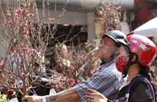 2012年壬辰春节放假九天