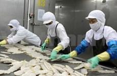 2011年越南与巴西双边贸易额猛增