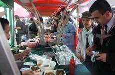 越南在英国伦敦举行大型文化活动