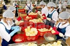 今年前8个月越南农林水产品出口保持增长势头