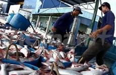 2012年三季度越南查鱼出口量猛增