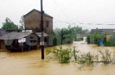 响应2012年国际减轻自然灾害日集会在岘港市举行