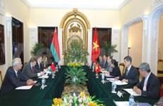越白外交副部长级政治磋商在河内召开