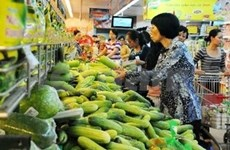 2013年世界各国对越南经济发展保持信心