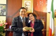 世界各地越南侨胞欢乐喜迎春节
