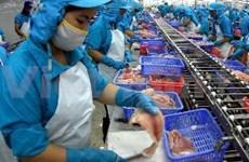 越南查鱼远销世界142个国家和地区