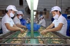 越南企业盼越南欧盟自由贸易协定早日签署