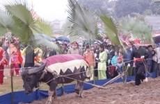 宣光省岱族隆东节被选为国家非物质文化遗产