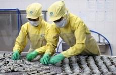 2013年越南水产业释放积极信号